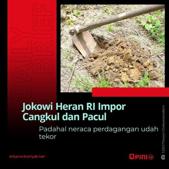 Jokowi Melongo RI Masih Impor Cangkul
